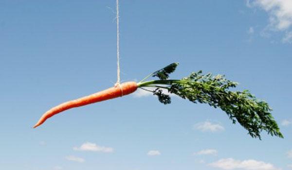 dangling-carrot-e1320078513627