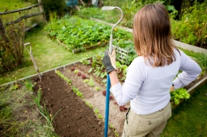 Gardening woman standing in vegetable garden holding hoe. Shallow depth of field with focus on gloved hand holding hoe.